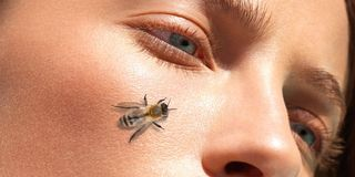 BEE VENOM AND MANUKA HONEY MIX PROMISES BOTOX IN A BOTTLE
