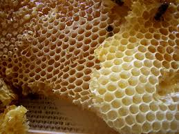 Honey may improve rosacea severity